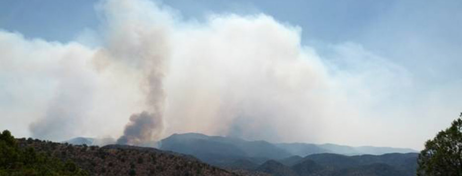 November 2014: Wildland Fire Smoke In The Air- What Does It Mean To Me?