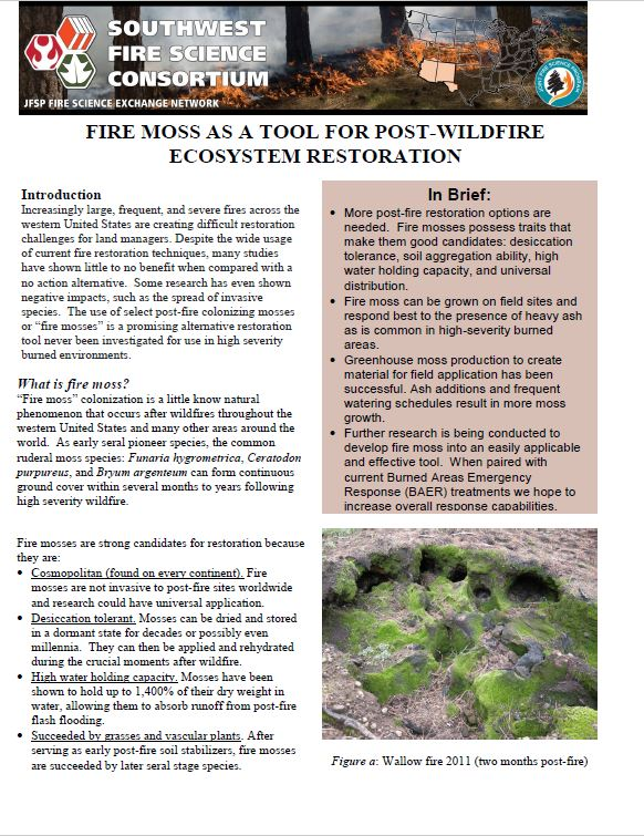 Fire Moss As A Tool For Post-wildfire Ecosystem Restoration